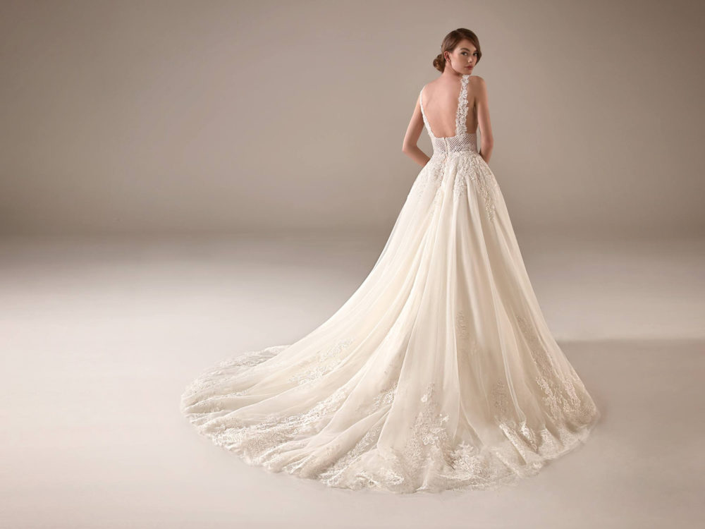 Pronovias Adwoa Wedding Gown Dress 2020 Privee Collection Whole back