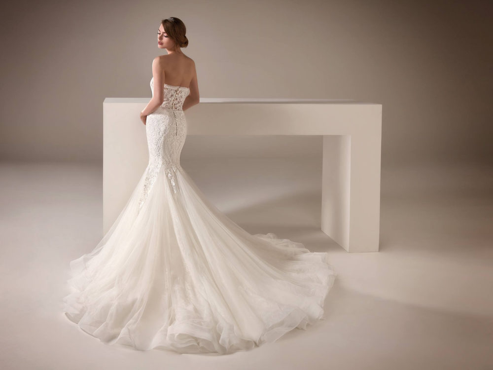 Alison Wedding Dress Gown from Pronovias Privee Collection Back