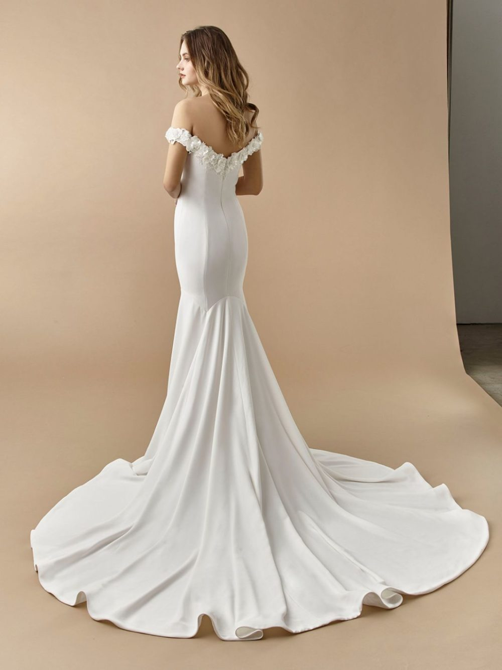 Beautiful by Enzoani Wedding gown dress BT20-14 back