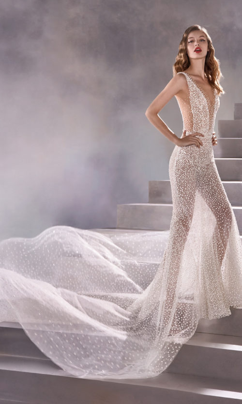 Pronovias Constellation Wedding Gown Dress 2020 Atelier Collection