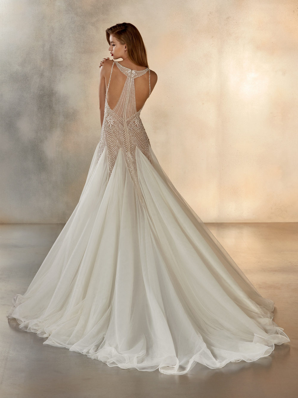 Pronovias Star Dreaming Wedding Gown Dress 2020 Atelier Collection Full Back