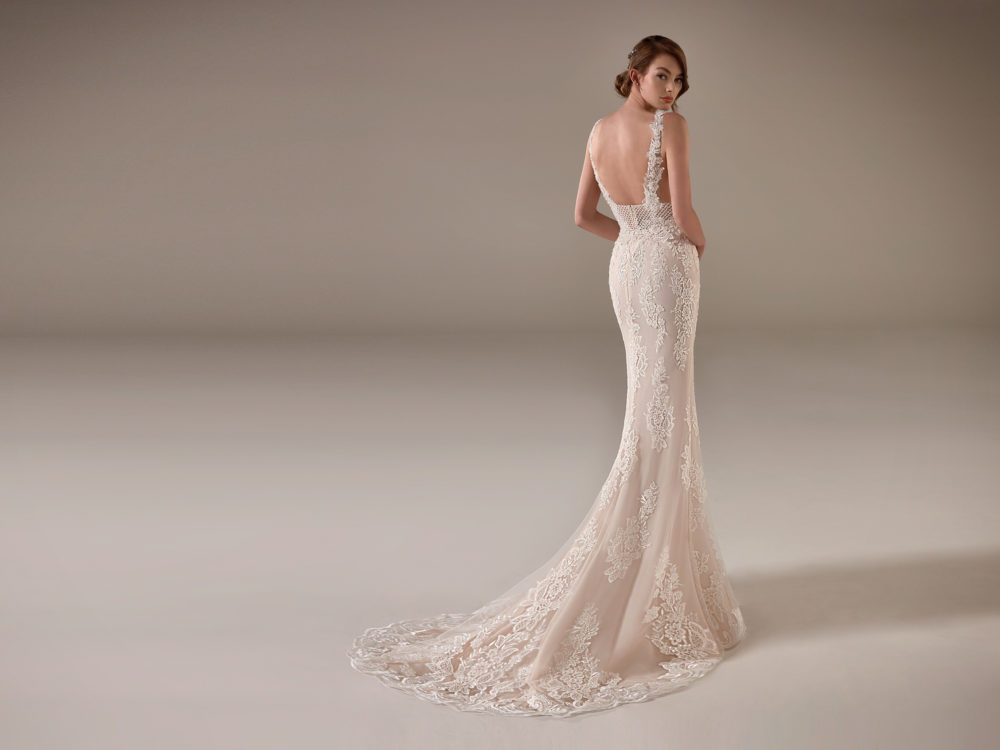 Franca Wedding Dress Gown from Pronovias Privee Collection C