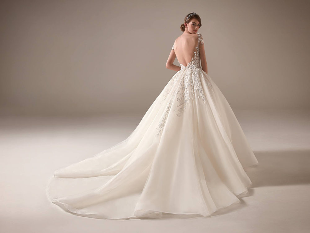 Ginni Wedding Dress Gown from Pronovias Privee Collection C
