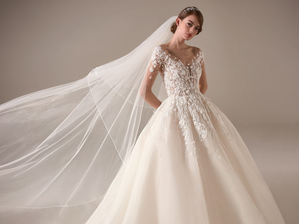 Ginni Wedding Dress Gown from Pronovias Privee Collection D