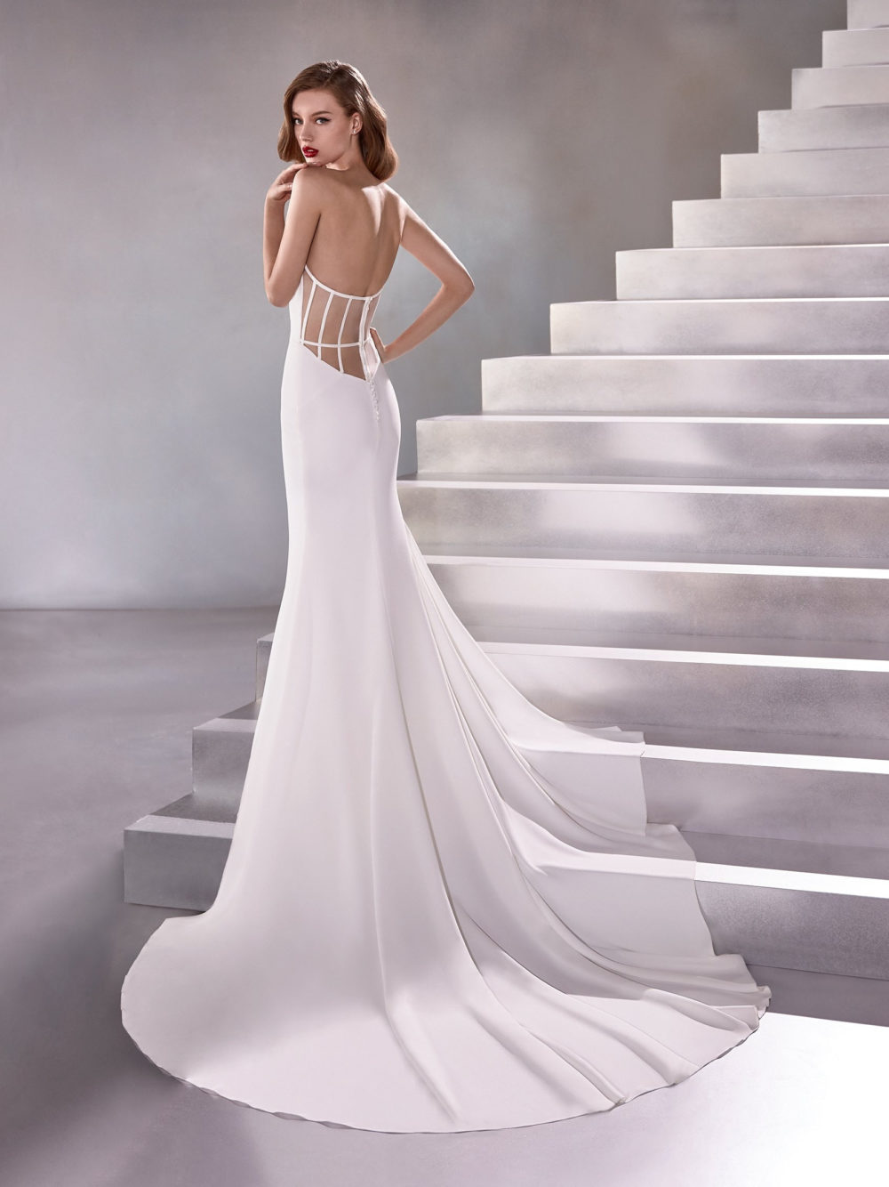 Pronovias Lux Wedding Gown Dress 2020 Atelier Collection Full Back