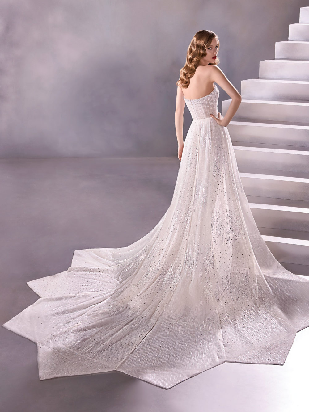 Pronovias Milkyway Wedding Gown Dress 2020 Atelier Collection back