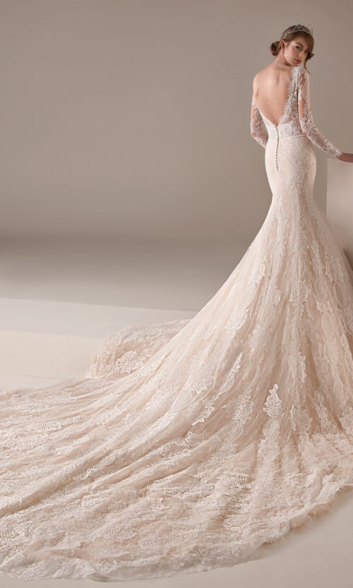 Miuccia Wedding Dress Gown from Pronovias Privee Collection