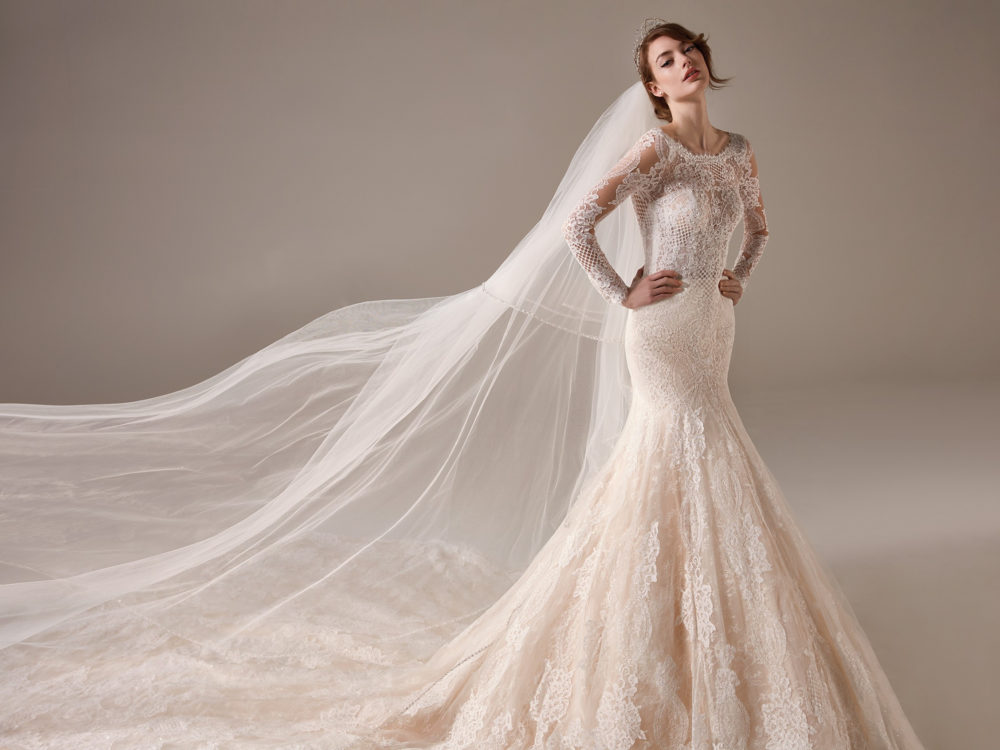 Miuccia Wedding Dress Gown from Pronovias Privee Collection D