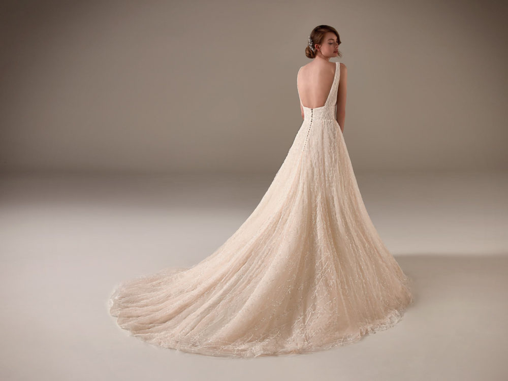 Nadia Wedding Dress Gown from Pronovias Privee Collection C