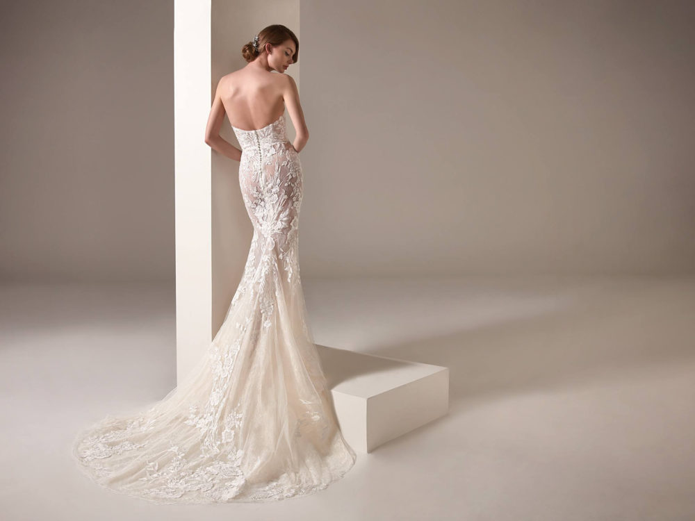Zaha Wedding Dress Gown from Pronovias Privee Collection C